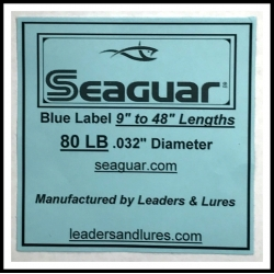 Seaguar Big Game 80lb